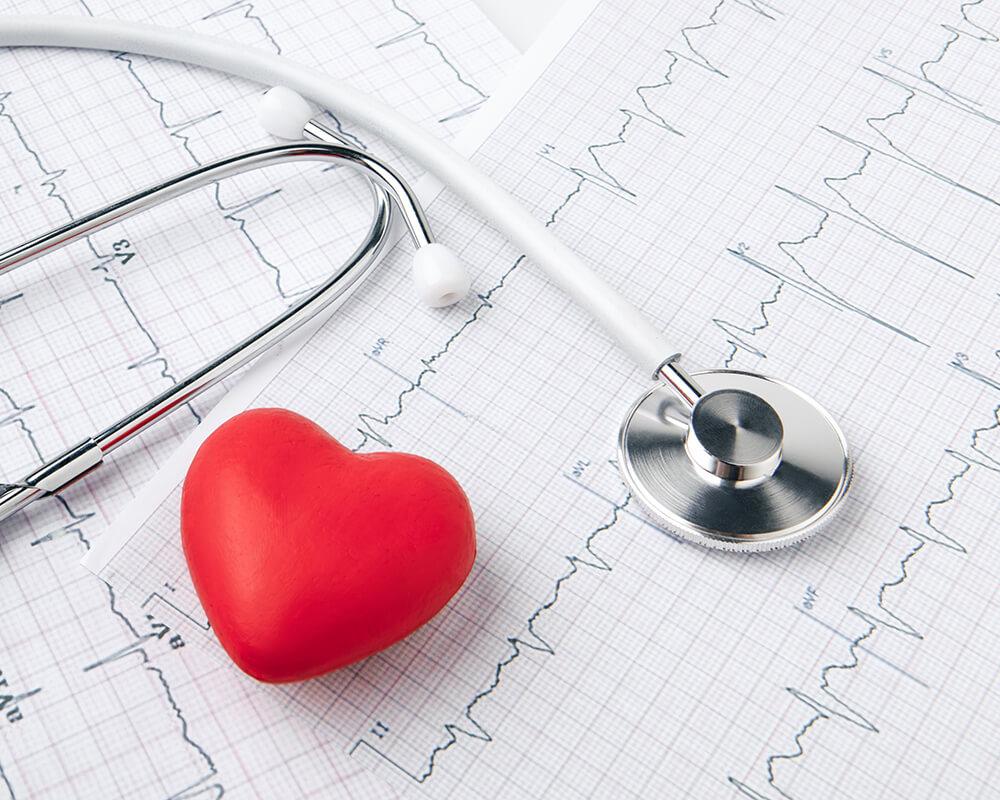 Kardiologe Vechta